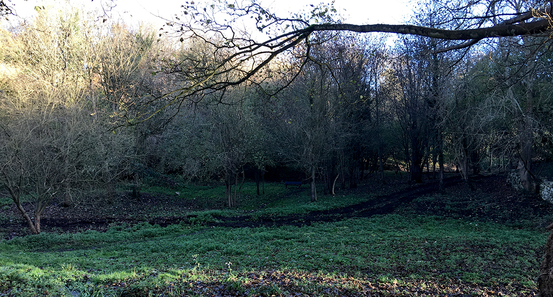 Crisbrook meadow